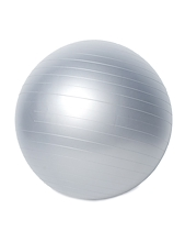 Onsport Exercise Gym Ball 65cm