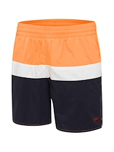 Speedo Split Logo Watershort Mens