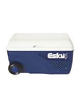 Esky 65L Ice King Cooler