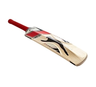Slazenger V800 Ultimate Cricket Bat