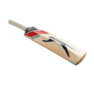 V900 Ultimate Cricket Bat