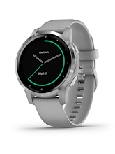 Garmin Vivoactive 4S Powder Gray Silver