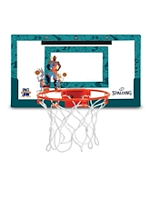 Spalding Space Jam Over the Door System Tune Squad